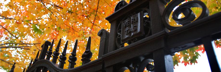 gate-image